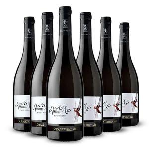Confezione 6 bottiglie di Pinot Nero Doc Trentino Linea Le Strope – Zanotelli