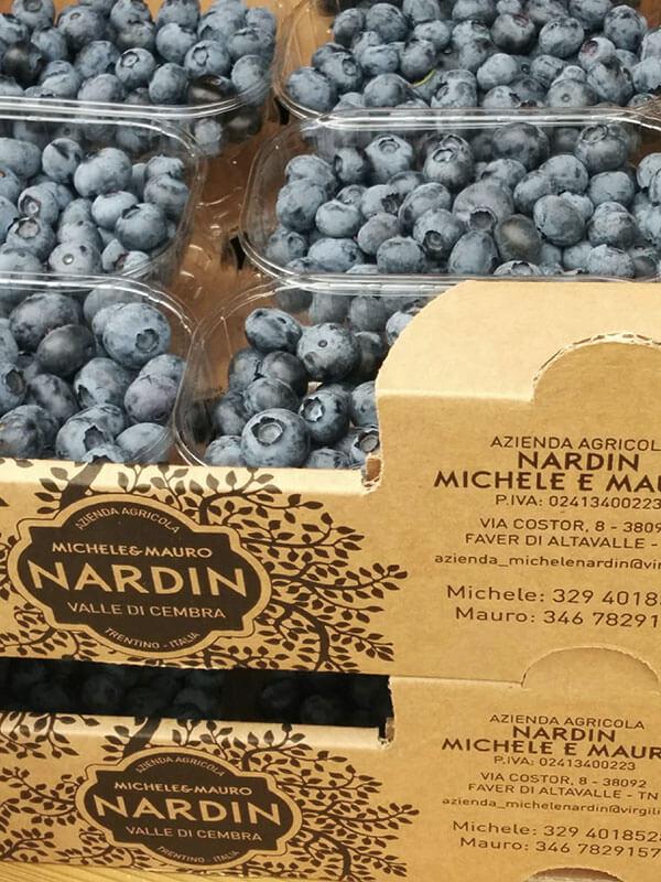 Società Agricola Nardin